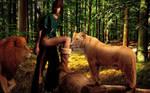 Robin Hood Serves the Lions
