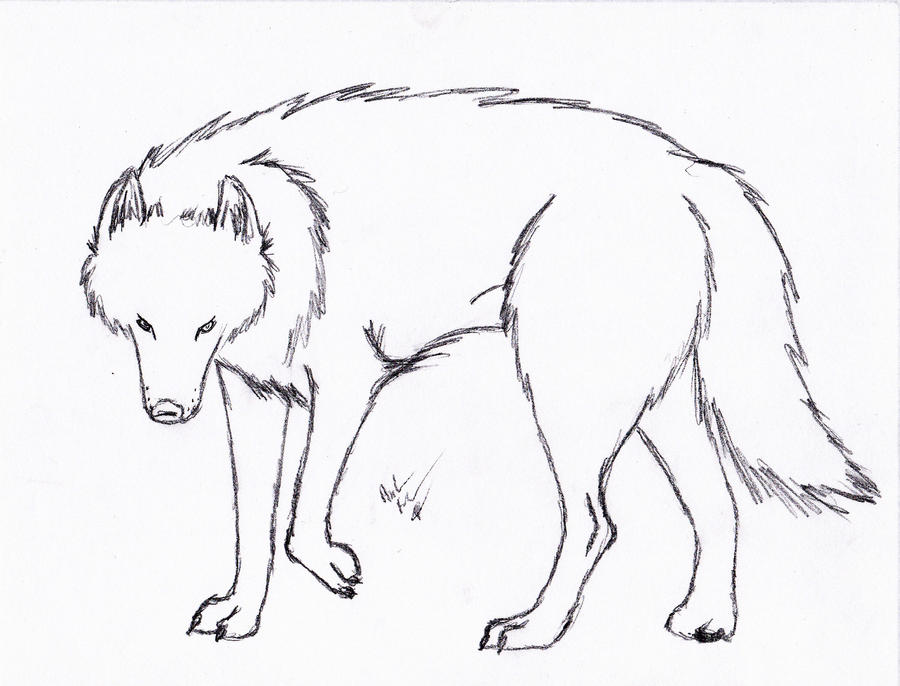 Line Art Wolf : Come here for free useable lineart artists writers and