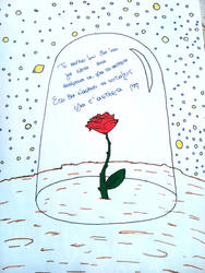 Le petit prince - My star is...
