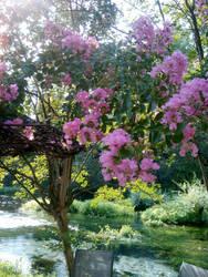 Summer flower tree