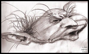 Froud copy II -- old old old by thebitingfaery