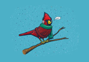 Annoyed IL Birds: The Cardinal by nickv47