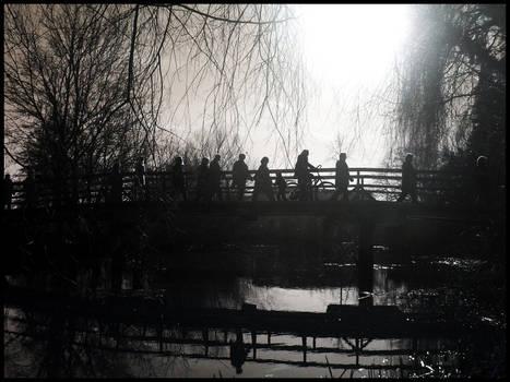 bridging the shadows
