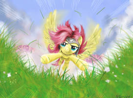 Fluttershy contest by Reillyington86