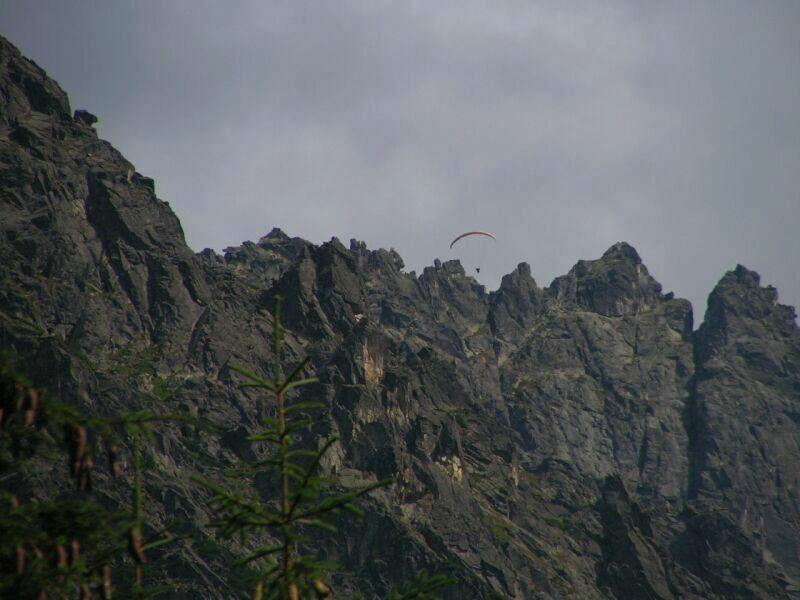 paraglider by louveska