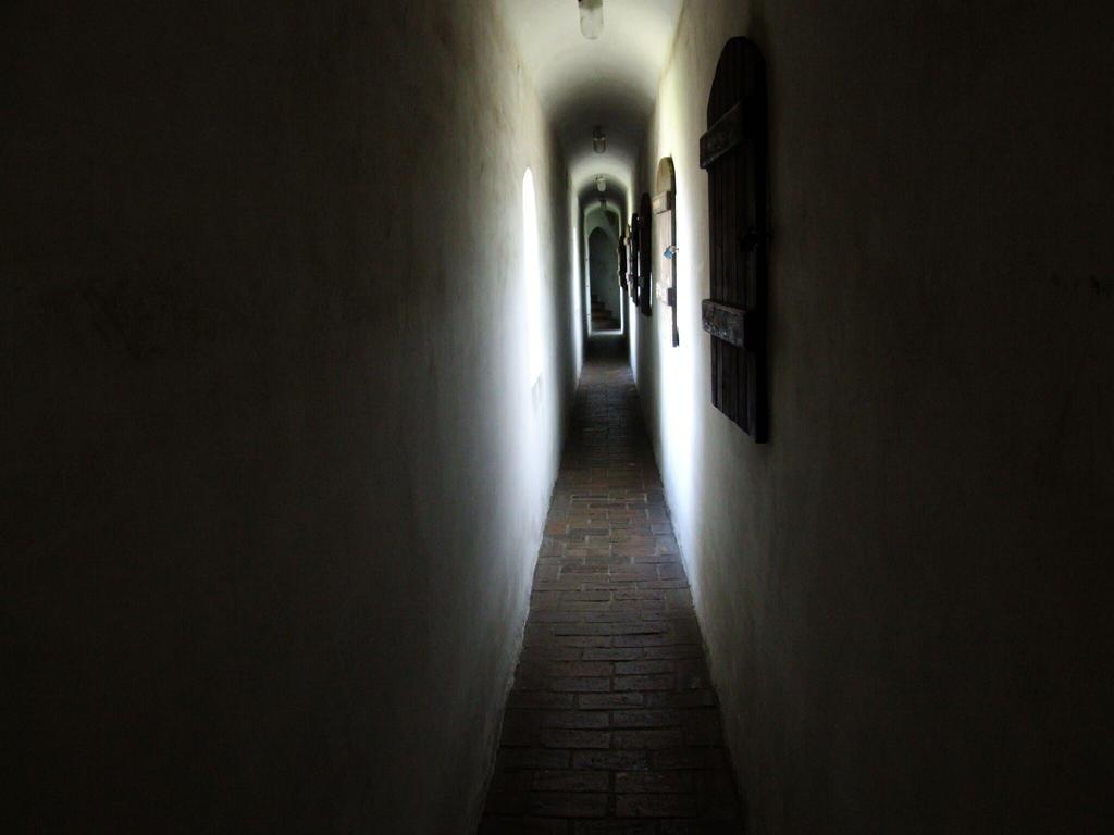 The path by Wanderlouve