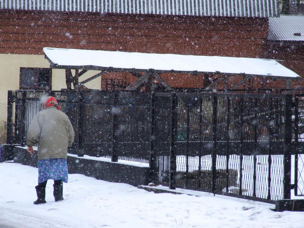 Snowoman by Wanderlouve