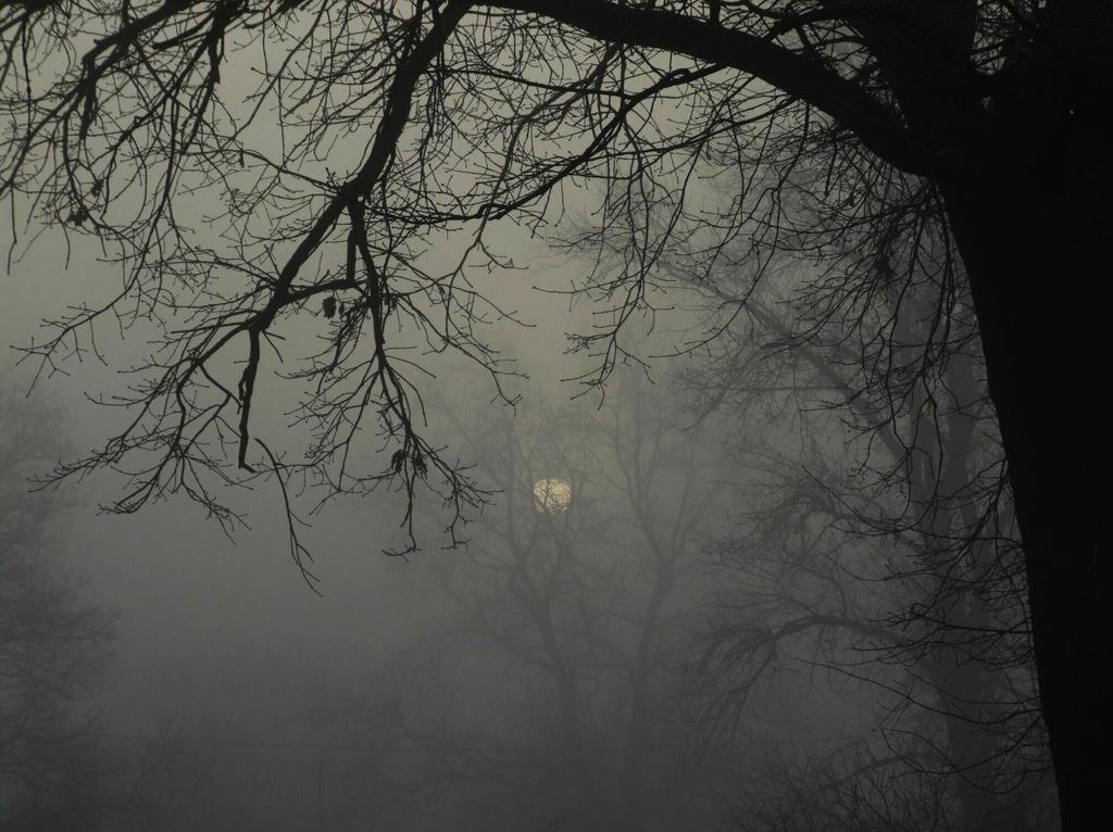 Gloomy morning by Wanderlouve