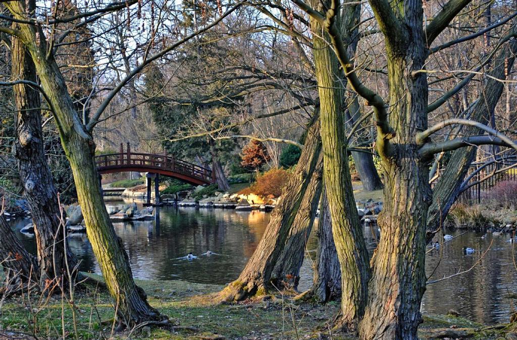 Little bridge by Wanderlouve