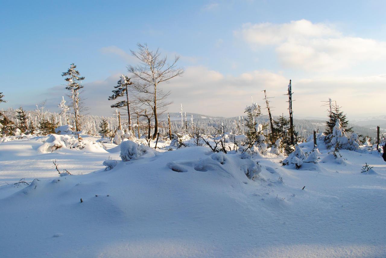 Let it snow by Wanderlouve