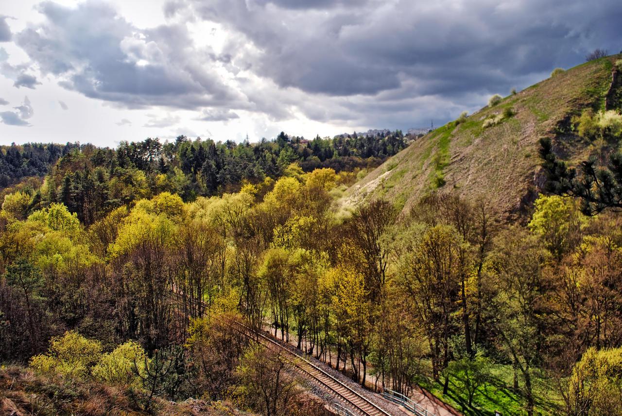 Rails by Wanderlouve