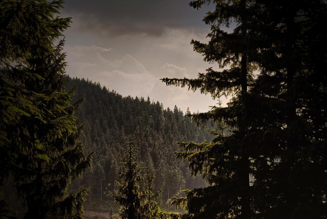 Darkness by Wanderlouve