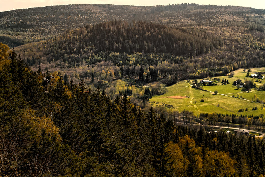 Steinberg by Wanderlouve