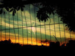 the fence sunset