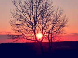 Sun sets by sophhks
