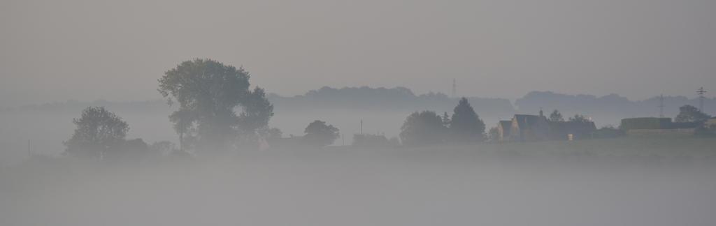 Through the fog by sophhks