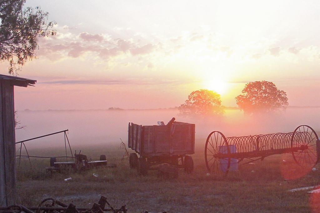 Sun Set by Chickenfetishlol
