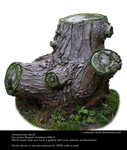 Stump By Cindysart-stock
