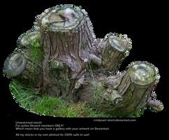 Stump 2 By Cindysart-stock by CindysArt-Stock