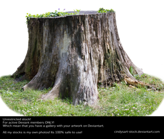 Stump 3 by cindysart-stock by CindysArt-Stock