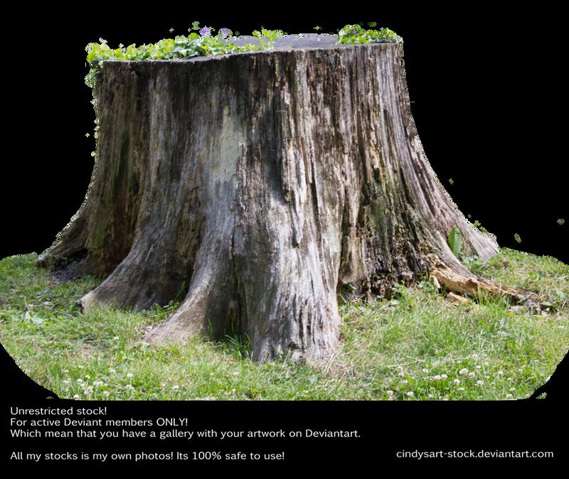 Stump 3 by cindysart-stock