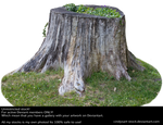 Stump 4 by cindysart-stock