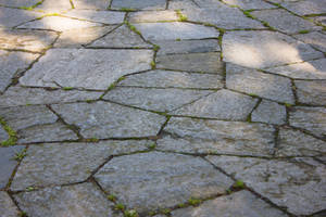 Paving stones By Cindysart-stock by CindysArt-Stock