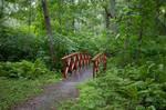 Bridge 1 By Cindysart-stock