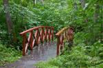 Bridge 2  By Cindysart-stock
