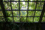 Greenhouse 3  By Cindysart-stock