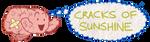 Cracks of Sunshine by LB-Lee