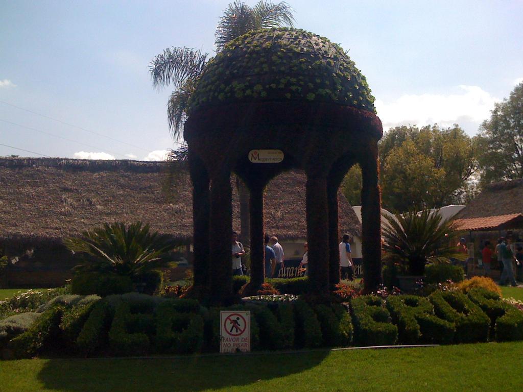 Puebla - Atlixco ~Greenhouses by Dairen-Ryuu-Hino