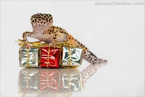 Christmas Presents by Alannah-Hawker