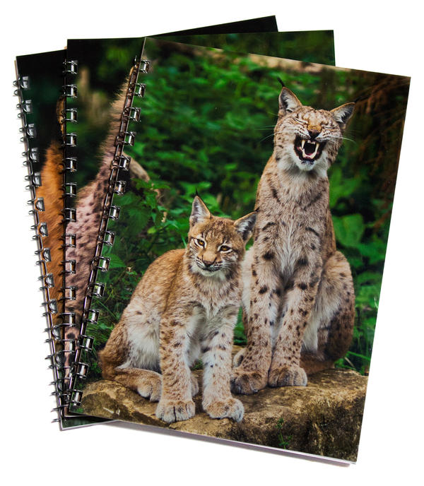 A5 Notebooks by Alannah-Hawker