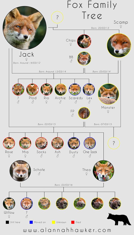 Fox Family Tree