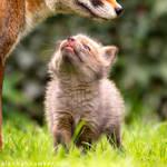 Hi Mum!