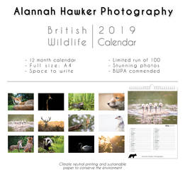 2019 British Wildlife Calendar by Alannah-Hawker
