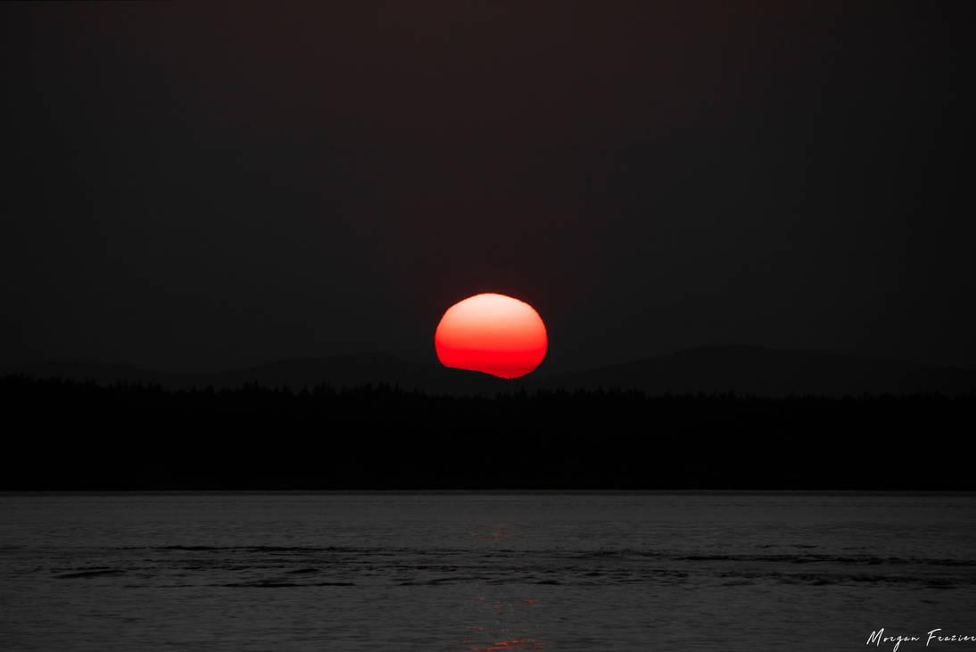 Rising in the Sun (Full Frame) by Elzyy