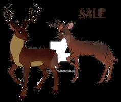 Deer - adoptable [open 2/2]