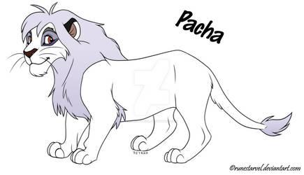 Pacha adoptable [CLOSED]