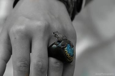 Frog prince by JessyPhotography