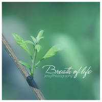 Breath of life by JessyPhotography