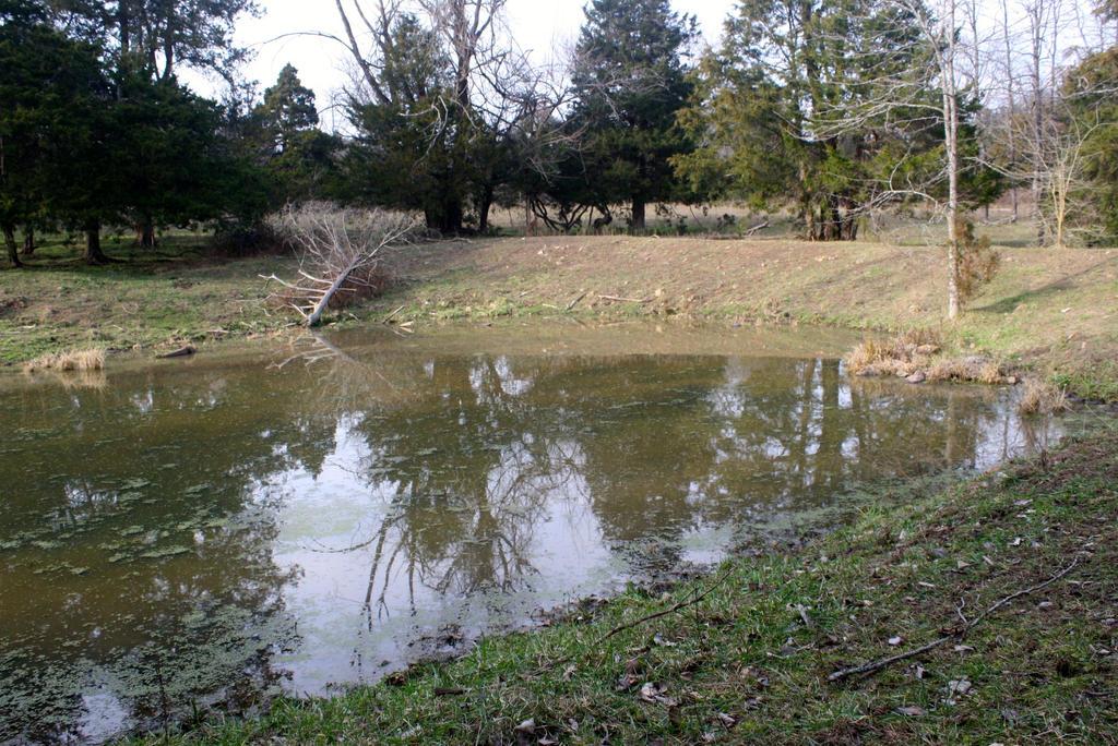 Pond 2 by followerofgod