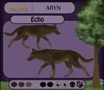Echo Application