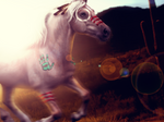The Spirit Horse
