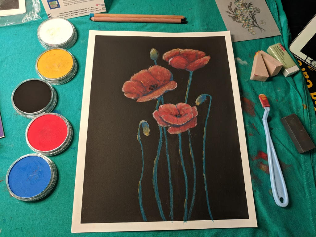 Poppies and Practice by Jlombardi