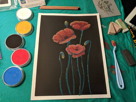 Poppies and Practice