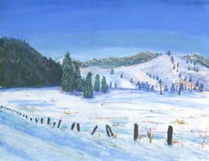 Winterfield