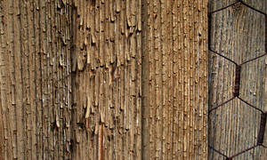 Exfoliated wood - texture pack