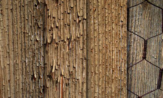 Exfoliated wood - texture pack by raduluchian